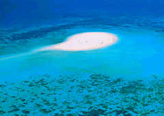 Mission Beach - Barrier Reef